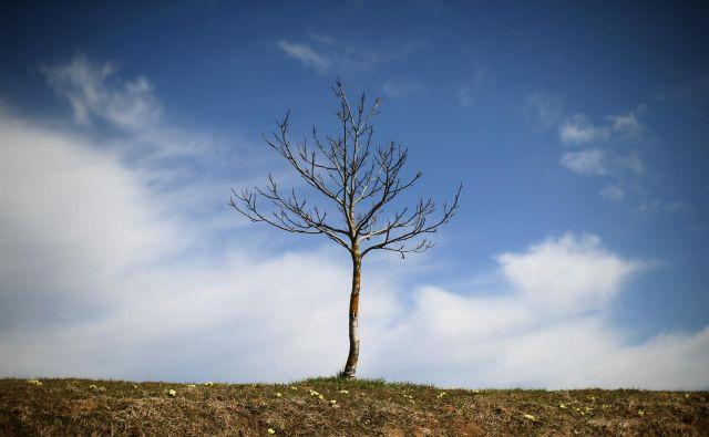 Ko se zgodi samomor v družini, ima žalovanje pri bližnjih lahko zelo različne oblike in pojavnosti. Te mora okolica spoštovati.<br /> Foto Jure Eržen