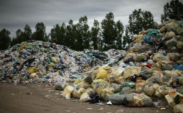 Med odpadki je končalo 35 odstotkov užitnega dela hrane. FOTO: Jure Eržen