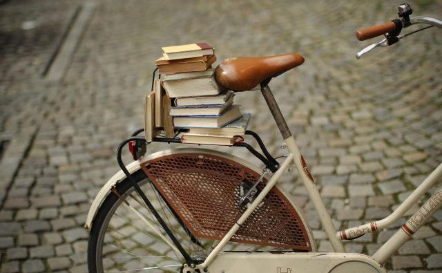 Ko študente prvega letnika vprašam, zakaj so se odločili za študij angleške književnosti, je njihov odgovor skoraj vedno enak: radi imajo knjige, radi berejo. FOTO: Jure Eržen