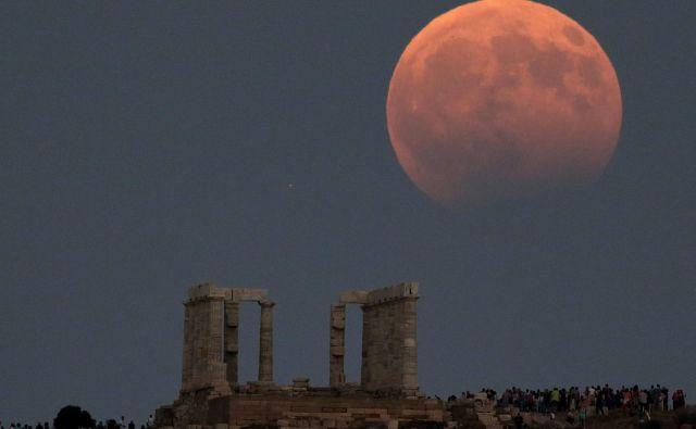 Mrki vedno pritegnejo pozornost. Slika je iz avgusta lani. FOTO: Costas Baltas/Reuters