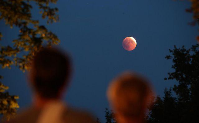 Opazovanje luninega mrka. FOTO: Jure Eržen