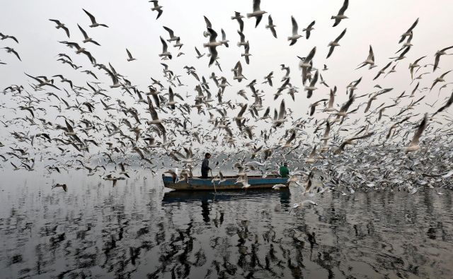 Reka Jamuna v New Delhiju v mrakobnem jutru, ko je dovoljena koncentracija smoga desetkrat presežena.<br /> Foto Reuters