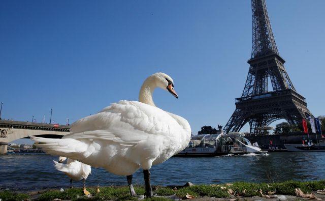 Eifflov stolp je ponovno odprt. FOTO: Reuters