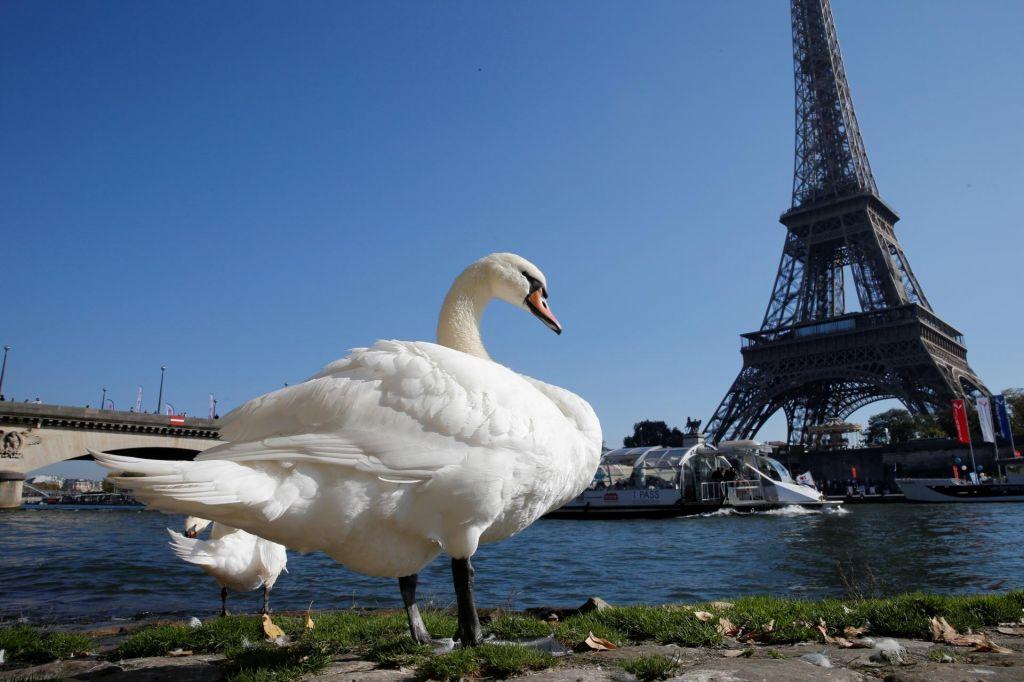Francoska znamenitost po stavki znova odprla svoja dvigala