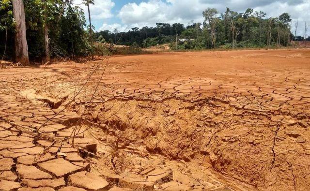 Opustošenje v Surinamu zaradi izkopavanja rud, zlasti zlata in živega srebra. FOTO Arhiv Wwf