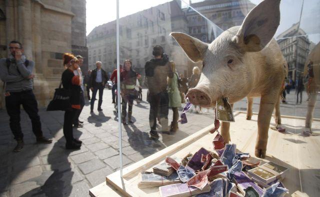 Goljufi z lažno predstavo prepričajo investitorje, nato pa človeški pohlep naredi svoje. FOTO: Reuters