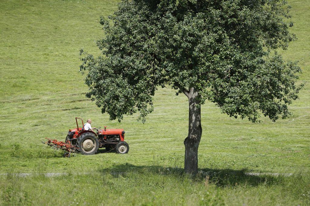 Košnja s traktorjem usodna za voznika