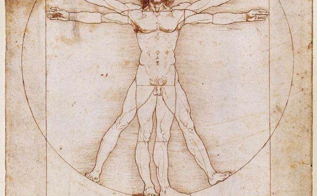 Leonardo da Vinci: Moški po Vitruviju, 1492. FOTO: Wikipedia