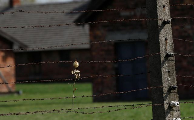 Nekdanje koncentracijsko taborišče Auschwitz. FOTO: Reuters/Kacper Pempel
