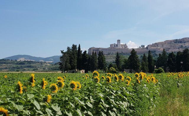 Assisi je pomembno romarsko središče. FOTO: Jure Predanič