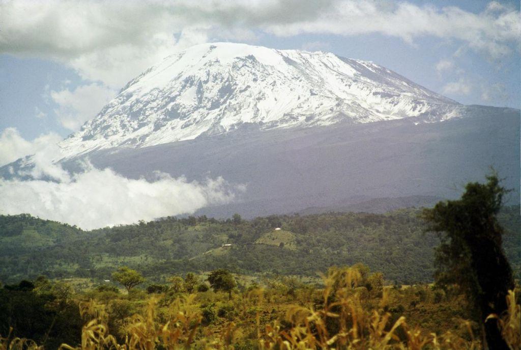Izginjajoči sneg na Kilimandžaru