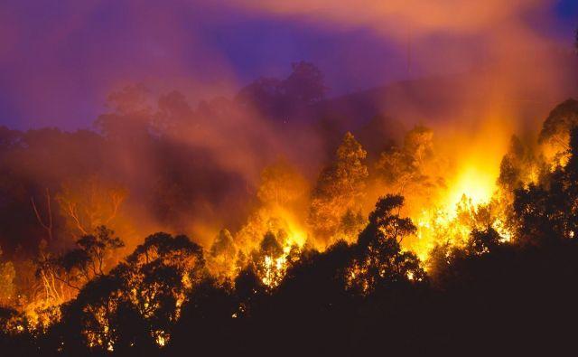 Požari so avgusta, ko je v Avstraliji zima, precej neobičajni. FOTO: Carbongrief.org