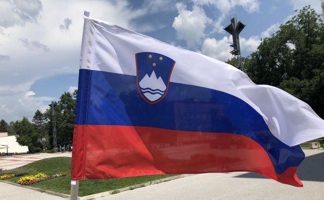 Dan združitve prekmurskih Slovencev kot državni praznik, ki ni dela prost dan, praznujemo od leta 2006. FOTO: Delo