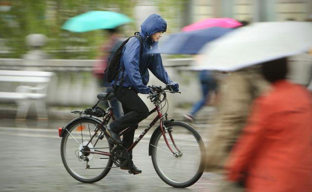 V soboto lahko pričakujete, da bodo padavine postopoma zajele večji del Slovenije. FOTO: Jure Eržen/Delo
