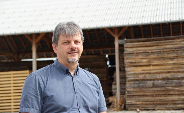 »Letos bo v občinskih gozdovih posekanih preko 20.000 kubičnih metrov lesa,« pravi Aleš Marolt, direktor podjetja Kočevski les. FOTO: Simona Fajfar