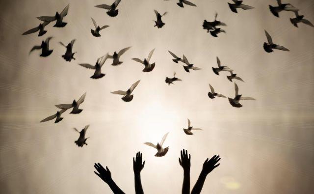 Svobodi enih na račun drugih je odklenkalo. FOTO: Shutterstock.com