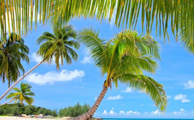 Nakazila za turistične storitve na plažah in letoviščih davčnih oaz so obdavčena že zdaj. Foto Shutterstock