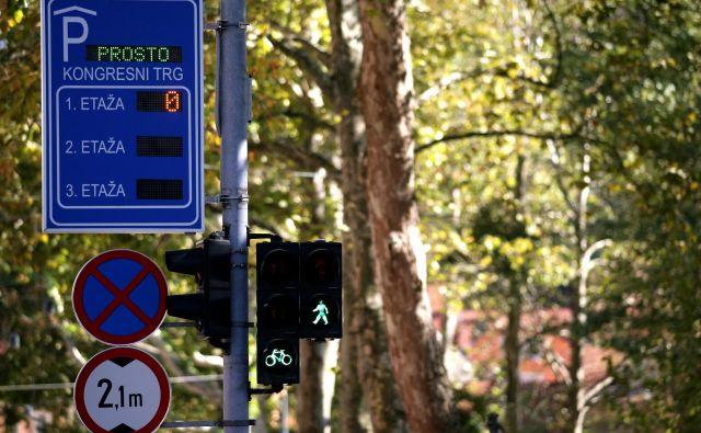 Na inštitutu so preverili in ocenili 14 parkirnih hiš v Ljubljani, Mariboru in na Obali. FOTO: Roman Šipič/Delo