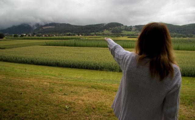 Braslovška polja, koder je načrtovana državna cesta Šentrupert-Velenje. FOTO: Brane Piano