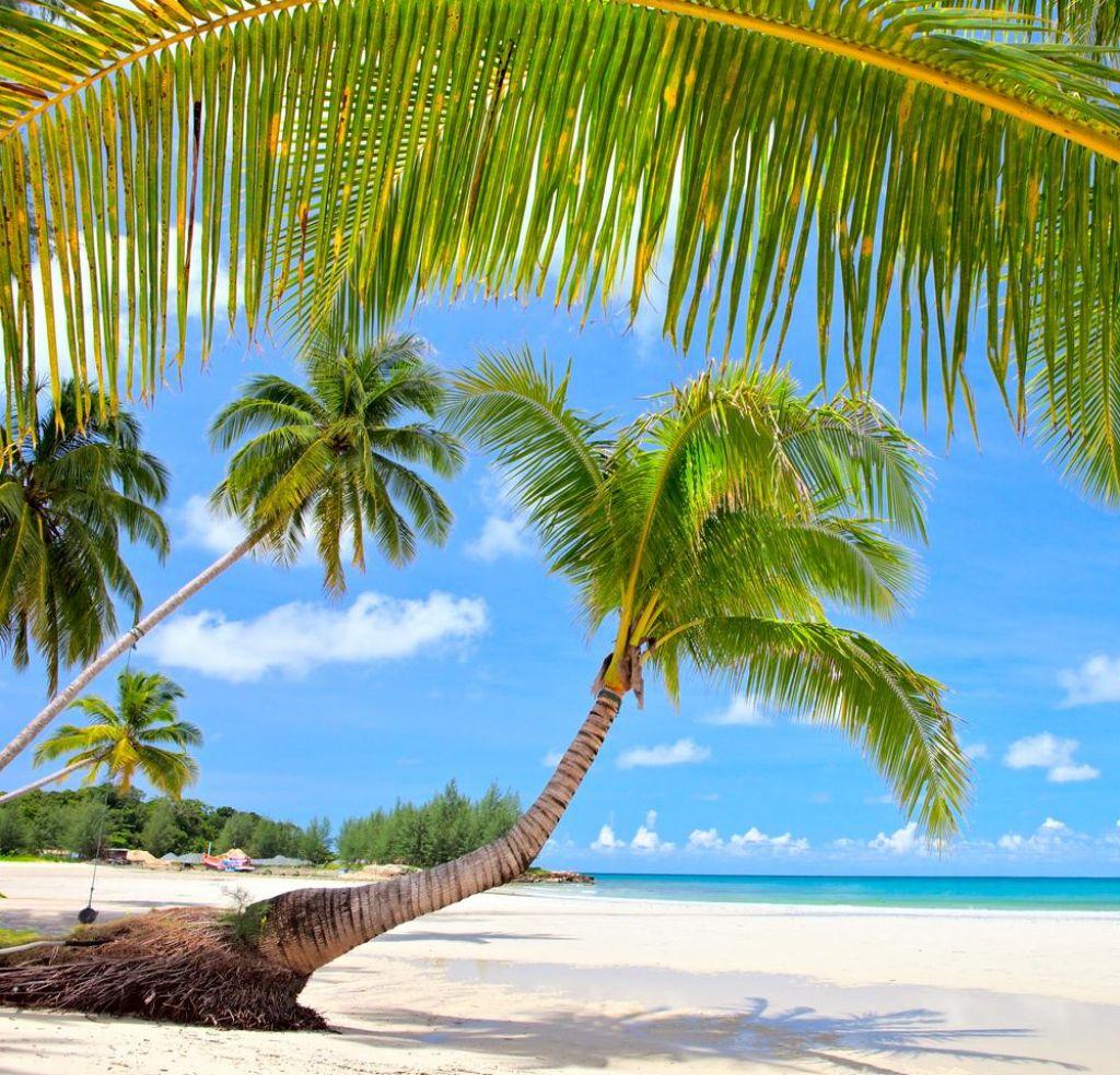 Potovanja na rajske otoke bi dodatno obdavčili