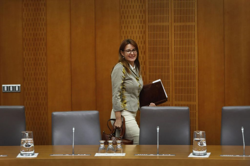 Katičeva dobila zeleno luč odbora