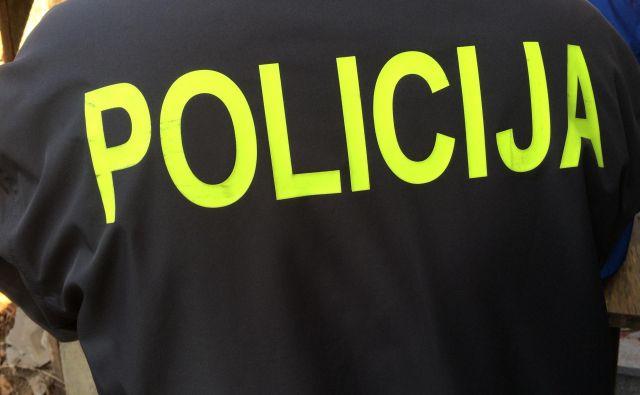 Policisti voznika obravnavajo zaradi vožnje pod vplivom alkohola ter povzročitve prometne nesreče in pobega s kraja. FOTO: Oste Bakal