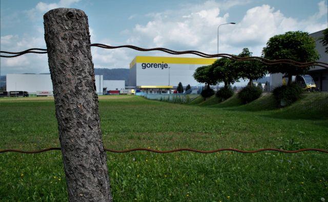 Travnik na robu območja Gorenjeve uprave in tovarn ob Partizanski cesti, kjer bo zrasla tovarna televizorjev. FOTO: Brane Piano