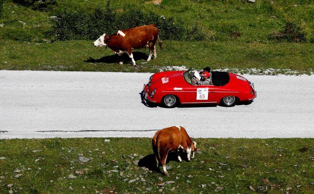 Voznikom starodobnikov na lokalnih cestah hitrost najbrž ni bistvena, mnogi vozniki pa se bodo razveselili, ker se bodo lahko kmalu po avstrijskih avtocestah podili s kar 140 kilometri na uro. FOTO Reuters