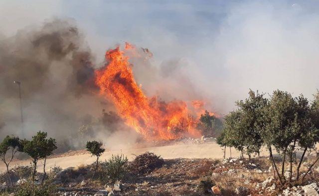 Požar na Pelješcu. FOTO: Facebook/Vatrogasci – Oni su naši heroji