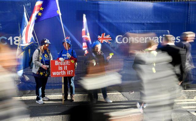 Nasprotniki britanskega izstopa iz EU protestirajo pred prizoriščem kongresa konservativne stranke v Birminghamu. FOTO: REUTERS/Toby Melville