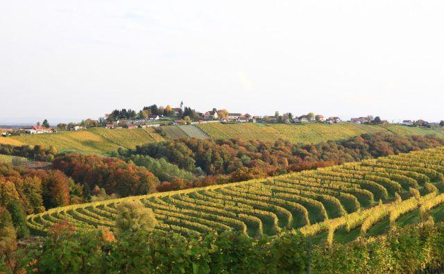 Kog, skriti biser sredi vinogradniške Prlekije. FOTO: Sonja Kamplet Rotar
