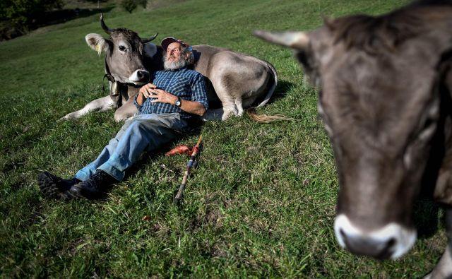 Življenje je lepo.<br /> FOTO: AFP