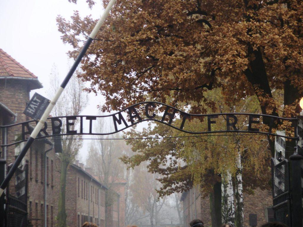 FOTO:Vodstvo Chelseaja bo rasistične navijače poskušalo »prevzgojiti« z izletom v Auschwitz