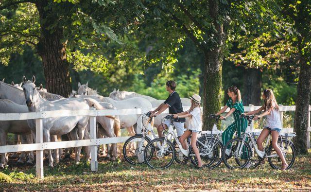 V okviru čezmejnega projekta MobiTour je po novem Lipico in okolico možno spoznavati tudi na električnih kolesih. Foto Vid Rotar/kobilarna Lipica
