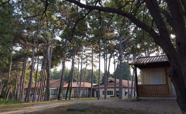 Počitniški dom stoji v raju na Zemlji. V lepem stoletnem borovem gozdu, v krajinskem parku Debeli rtič, v ohranjeni naravi, kakršne je na slovenski obali še zelo malo. FOTO: Boris Šuligoj