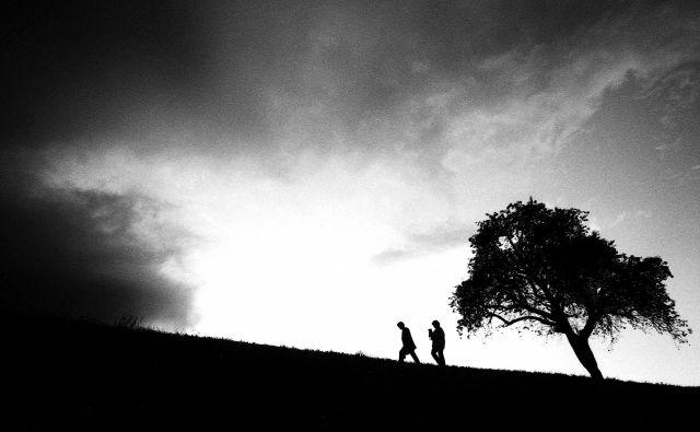 FOTO: Tomi Lombar/Delo