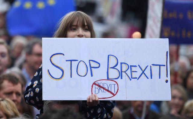 Na protestu so zahtevali referendum o končnem dogovoru. FOTO: Clodagh Kilcoyne/Reuters