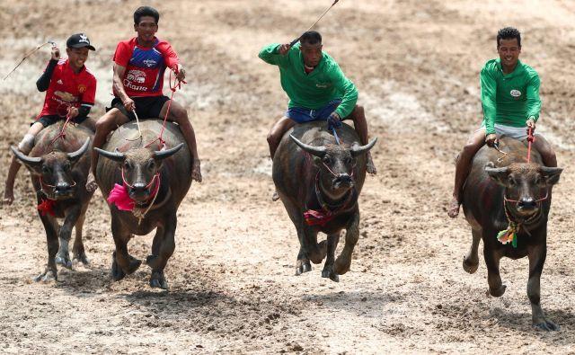 Letos je potekala že 147. dirka. Foto Athit Perawongmetha Reuters