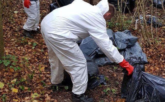 Pri odstranjevanju odpadkov iz črnomaljskih gozdov je sodelovalo pet komunalnih delavcev. FOTO: KP Črnomelj