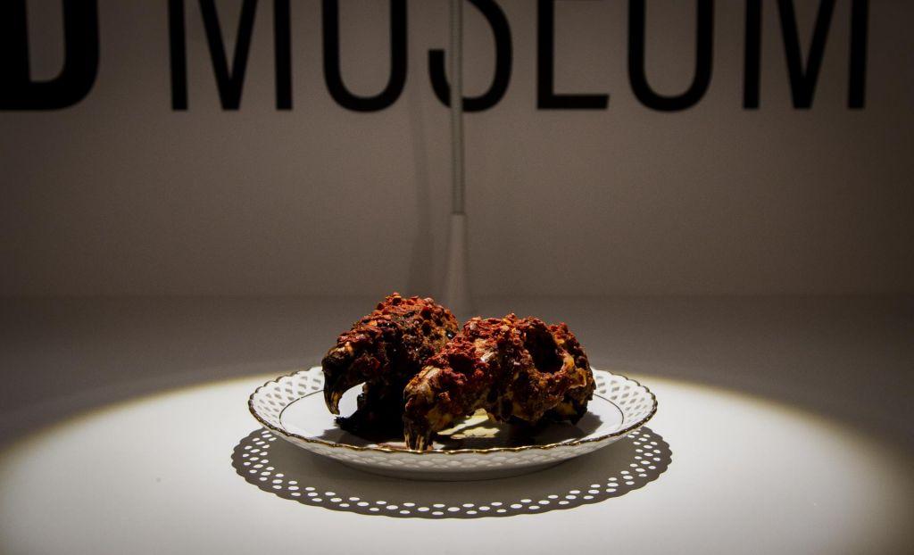 FOTO:Na Švedskem odprli muzej ogabne hrane (FOTO)