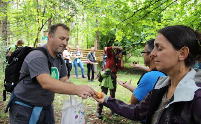 Gozdna pedagogika ni primerna le za mlajše. Foto Simona Fajfar