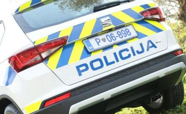 Policisti so divjaka ustavili med Lipcami in Karavankami. FOTO: Policija