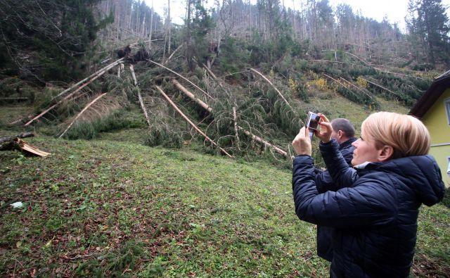 Ministrica za kmetijstvo Aleksandra Pivec je po ogledu škode v Koprivni kmetom obljubila pomoč najprej pri čim hitrejši sanaciji, nato pa pri ponovnem zasejevanju prizadetih območij. FOTO: Tadej Regent/Delo