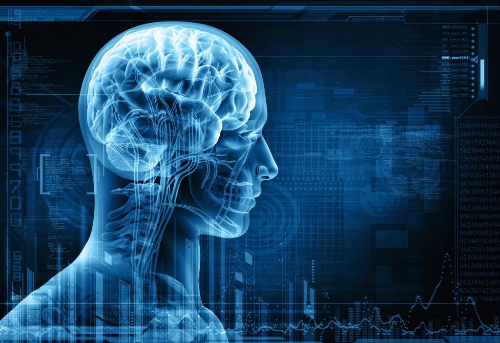 FOTO:Telesna vadba pomlajuje možgane