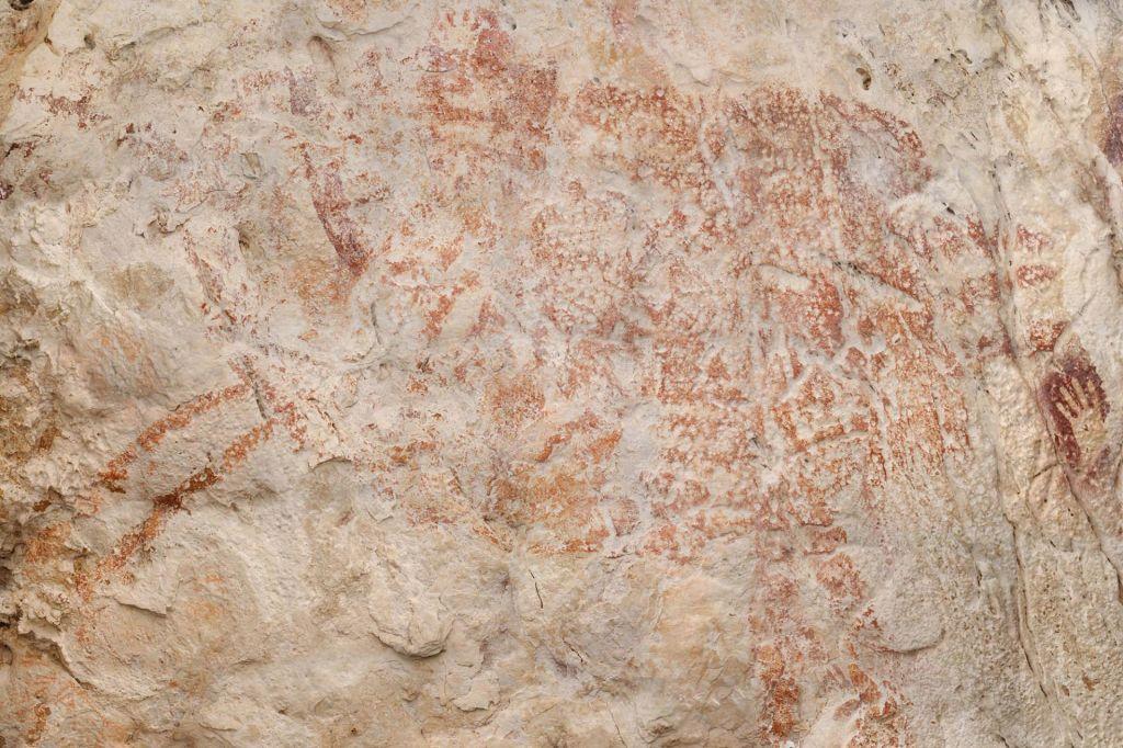 Odkrili najstarejšo sliko živali