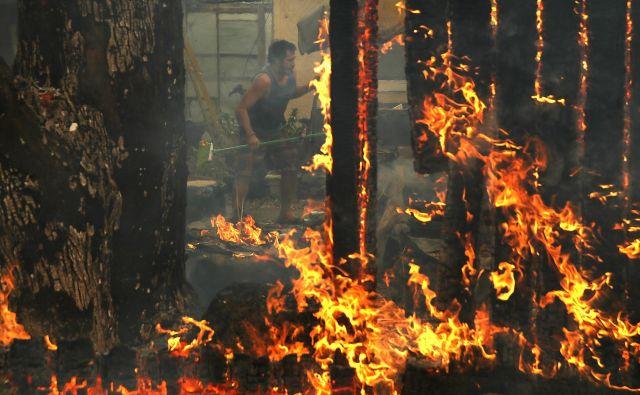 Od desetih najbolj uničujočih požarov v Kaliforniji jih je devet divjalo v zadnjih petnajstih letih, kar šest v zadnjih štirih letih. FOTO Justin Sullivan/Getty Images