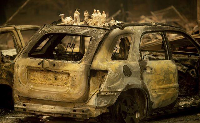Mnogi ognju niso mogli uiti. Pearson Road, Paradise, Kalifornija. FOTO: Noah Berger/AP