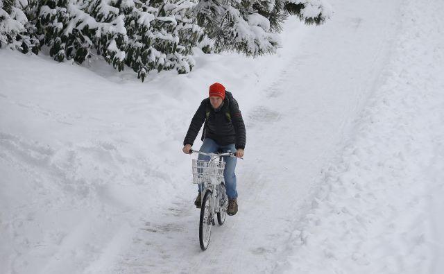 Bo v torek snežilo? FOTO: Jo�že Suhadolnik