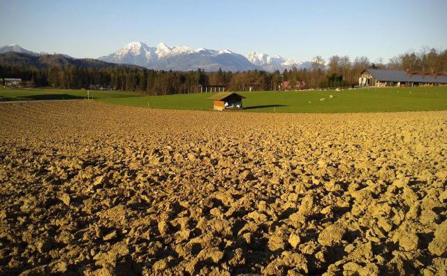 Kmetijska zemljišča zlahka žrtvujemo za gospodarski razvoj, kakor da kmetijstva ne priznavamo kot veje gospodarstva. FOTO: Jure Eržen