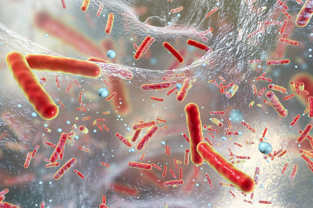 Supermikrobi postajajo največji svetovni morilci